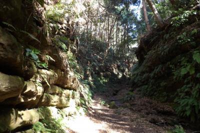 亀ヶ淵奥の切通から獅子舞谷入口まで(3)