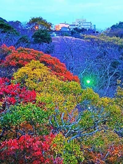 長崎18 風頭山a 風頭公園‐亀山社中跡あたり 夕方探訪 ☆矢太楼-散歩地図を受け
