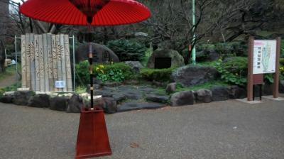 結婚記念日in熱海-梅園散策🍁-