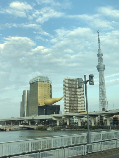 東京観光 その④