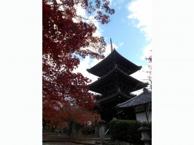 19年   秋の京都を歩く