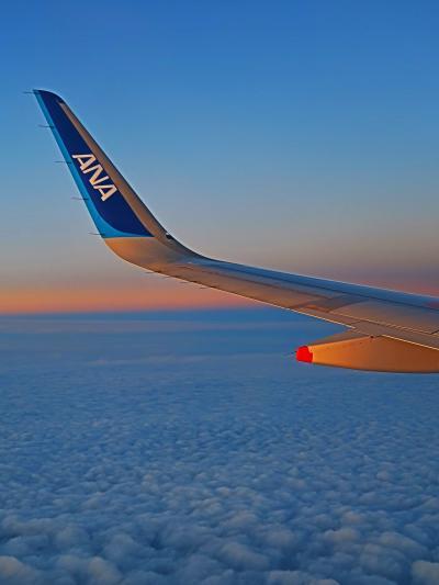 東京/羽田空港 ANA456便 17:40定刻到着 ☆佐賀/曇天-雲上は夕焼け・隣は空席