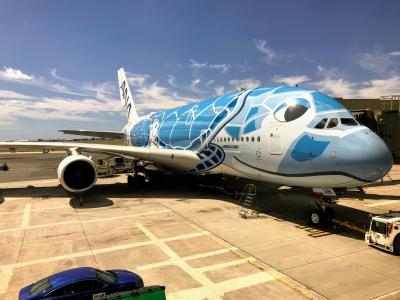 [2019 ハワイ] Leg.8(Fin)  ANA・A380<フライングホヌ>  NH183便 搭乗記 (HNL→NRT)