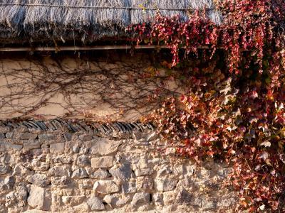 韓国の昔を訪ねた一週間(2)河回村 ハフェマウルの秋