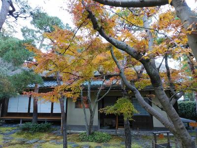 鎌倉2019紅葉 【2】一乗恵観山荘&鎌倉宮