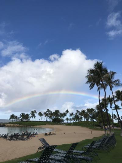 8泊10日  夫と私の終活ハワイ旅