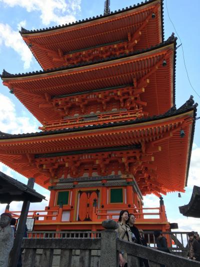清水寺は、テッパンですね