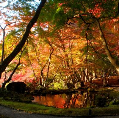 京都紅葉八景(2)醍醐寺