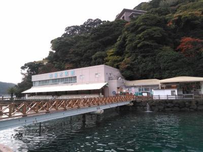 2019 伊豆紅葉家族旅行(2)~あわしま、沼津、富士~