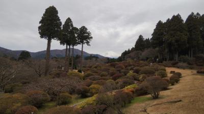 箱根芦ノ湖、「小田急山のホテル」の忘年会旅