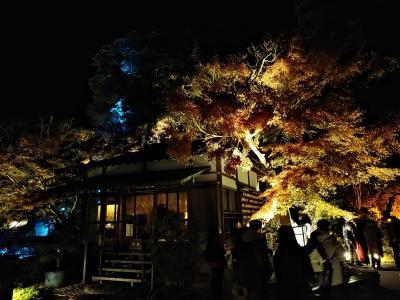 鎌倉2019紅葉 【3】長谷寺