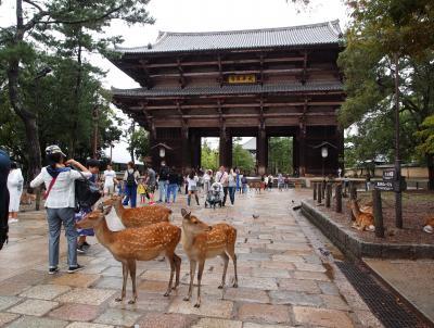 初秋の京都と奈良の旅 二日目【1】京都東寺、奈良正倉院から東大寺大仏殿へ