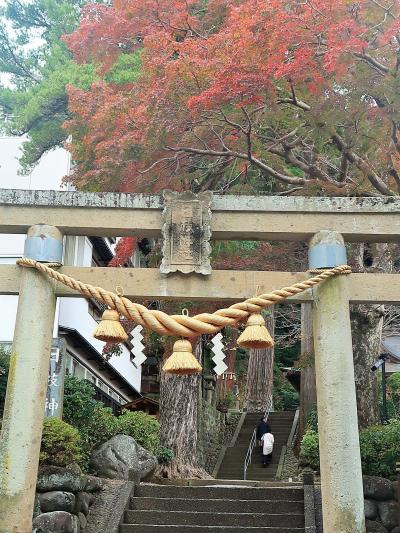 修善寺-2  日枝神社に参拝 イチイガシ:県-天然記念物 ☆縁結び/子宝祈願の神社