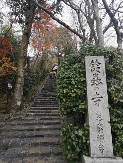 一泊二日、さくっと京都