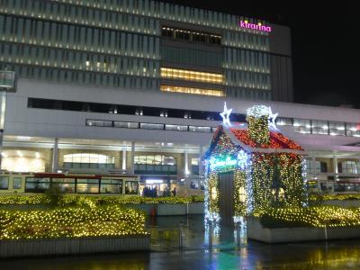 2019年 12月下旬 冬至・・・・・③武蔵野イルミネーション