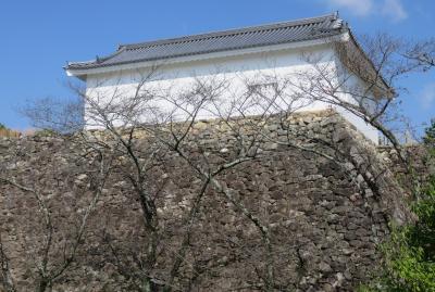 2019秋、亀山城と桑名城(1/8):10月30日(1):亀山城(1):JRで亀山駅へ、歩いて亀山城へ、本丸多聞櫓、高石垣