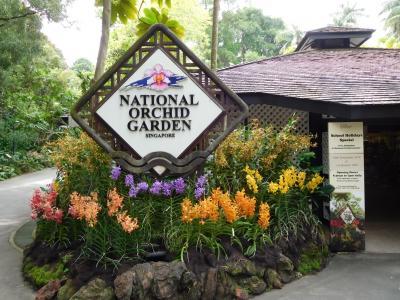 モルディブのんびりマイル旅(その2)~経由地のシンガポール編②:シンガポール植物園~