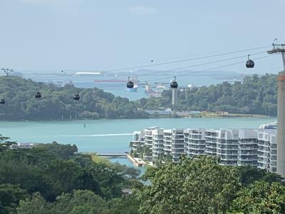 2019年末年始は南インド洋の国々アイランドホッピング(1)シンガポール乗継観光してヨハネスブルグへ&当初の全行程予定編