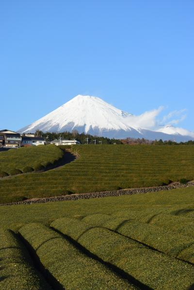 富士滞在 12月