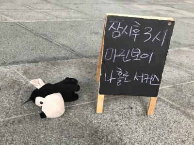 韓国 ひとり旅(6)大道芸に大笑い