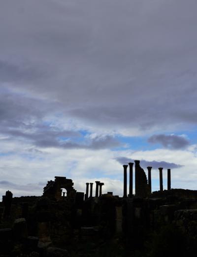 アーファク モロッコ 5ローマ時代が鮮やかによみがえる ヴォルヴィリス遺跡
