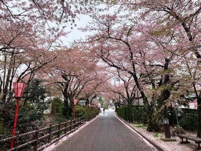 岳温泉_Dake Onsen 安達太良山の恵み!三度の災害を乗り越えて今に続く酸性泉の名湯