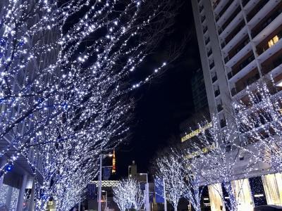 2019年12月 六本木イルミネーションとクリスマスディナー