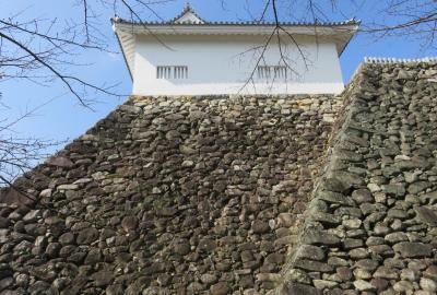 2019秋、亀山城と桑名城(4/8):10月30日(4):亀山城(4):本丸、与助井戸、多聞櫓、手水鉢、野面積石垣