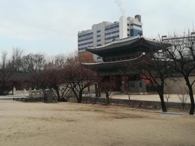 昌慶宮(チャンギョングン)から昌徳宮(チャンドックン)