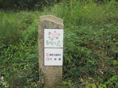 葛城古道を歩く