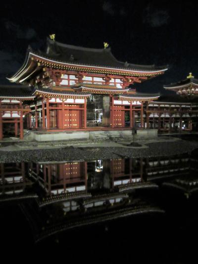 2019京都の紅葉⑯「平等院」のライトアップと宇治の抹茶料理「茶楽遊膳」を頂く