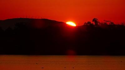 早朝散歩 久しぶりに瑞ヶ池の日の出の撮影ができました 下巻。