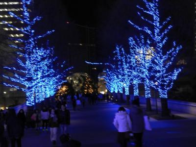 Xマス・イブに輝く横浜のイルミネーション