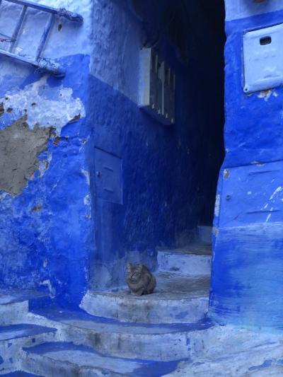 2019・秋のモロッコ旅行 その3-1、青い蒼い碧い街