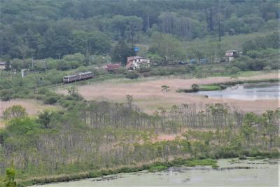 釧路湿原を走る釧網本線2019~ノロッコ号とサルルン展望台から眺める湿原列車(釧路)