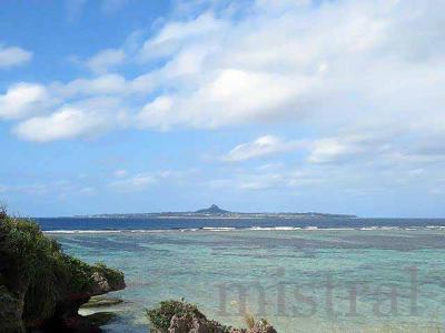 12月の沖縄 再び
