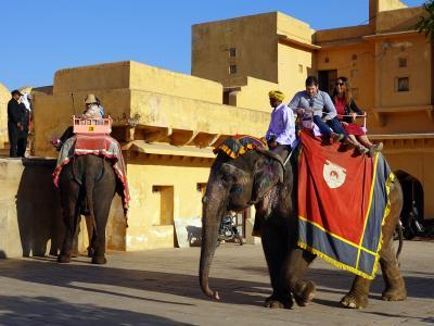 不思議な国インド訪問記 9 (アンベール城と風の宮殿)