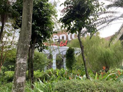 シンガポール・セントーサ島をただ散歩
