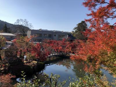 秋の京都~二条城・永観堂・南禅寺~