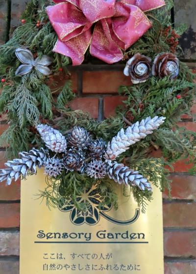 Japan 昭和記念公園 クリスマスイブのハーブガーデン ~ミツバチばあやの冒険~