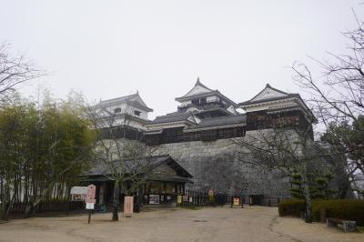 (8)日本100名城 81 松山城
