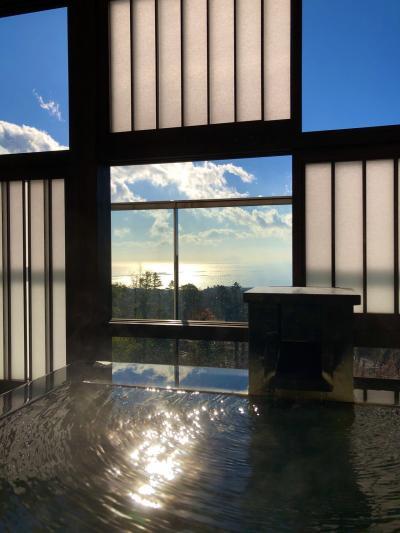 【伊豆高原】冬の伊豆へ温泉旅 大室の杜 玉翠
