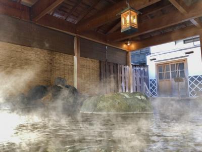 【河津温泉郷】冬の伊豆へ温泉旅 玉峰館(露天風呂付客室)
