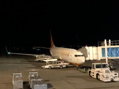 チェジュ航空 7C1281便 静岡空港から仁川国際空港