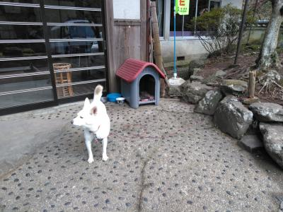 2019 年末湯めぐり(1)~奈良、和歌山、和泉~
