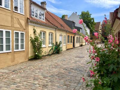北欧一人旅☆童話作家アンデルセンの故郷「オーデンセ」