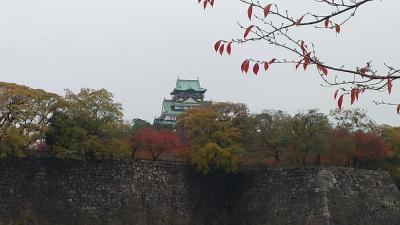 大阪城公園で紅葉見物
