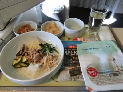 2019年冬 チェジュ旅行 1日目~大韓航空ビジネスクラス搭乗機及びチェジュ到着