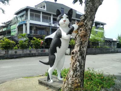 """""""猫""""を求めてふ~らふら、猫好きにはたまらない猫だらけの町…クチン"""