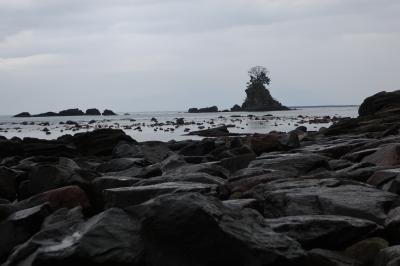 どんより氷見散歩。ひみ番屋街雨晴海岸勝興寺櫛田神社鵜坂神社、ほたるいかミュージアム。